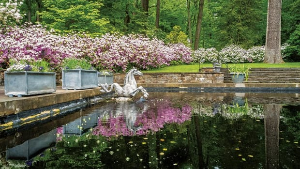 reflecting pool at winterthur