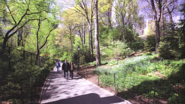 Neighborhood parks, such as Central Park in New York City, allow people to exercise and enjoy fresh air, while also raising the market value of nearby properties.