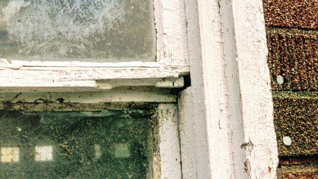 repairing historic wood windows