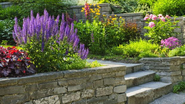garden landscaping buying guide