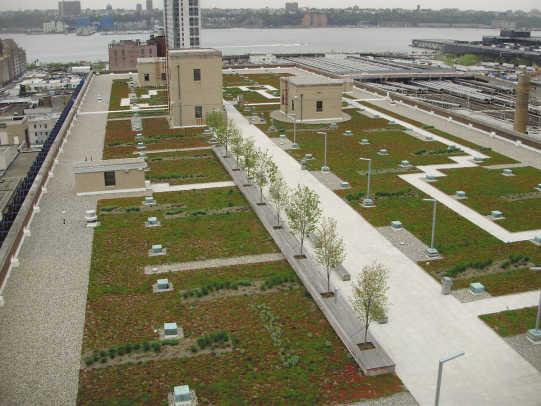 Roof-Garden-1