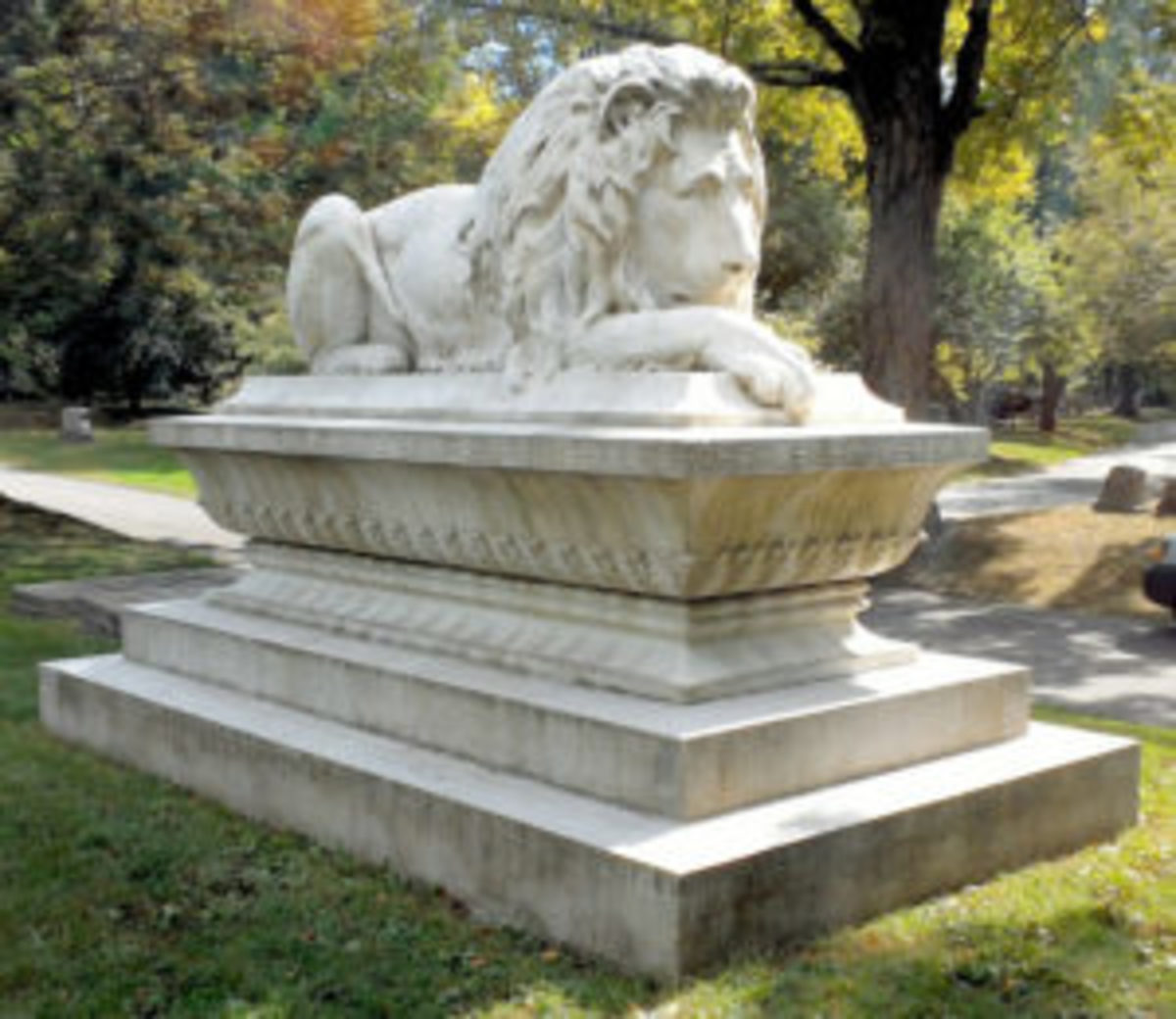 Ayer's Lion