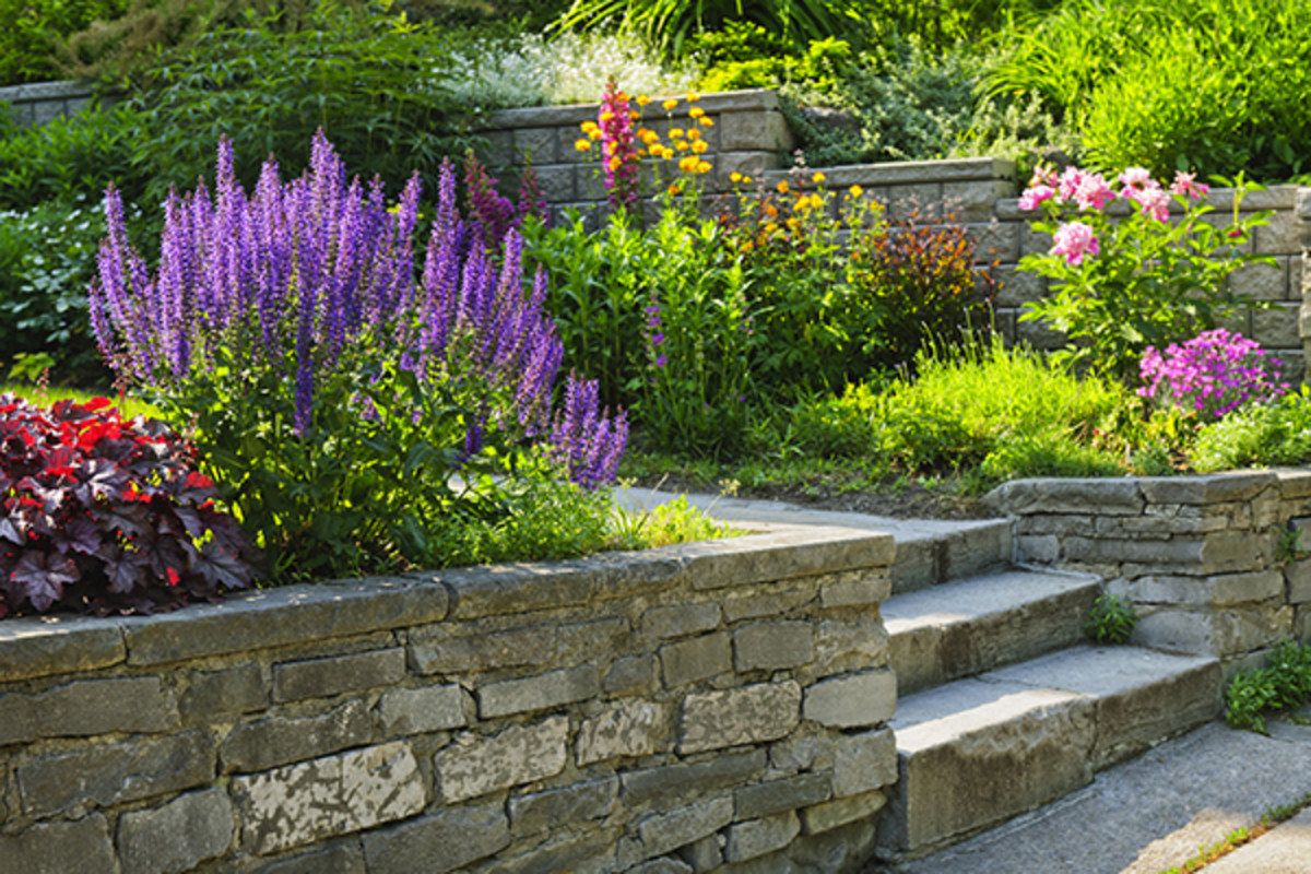 landscape and garden buying guide