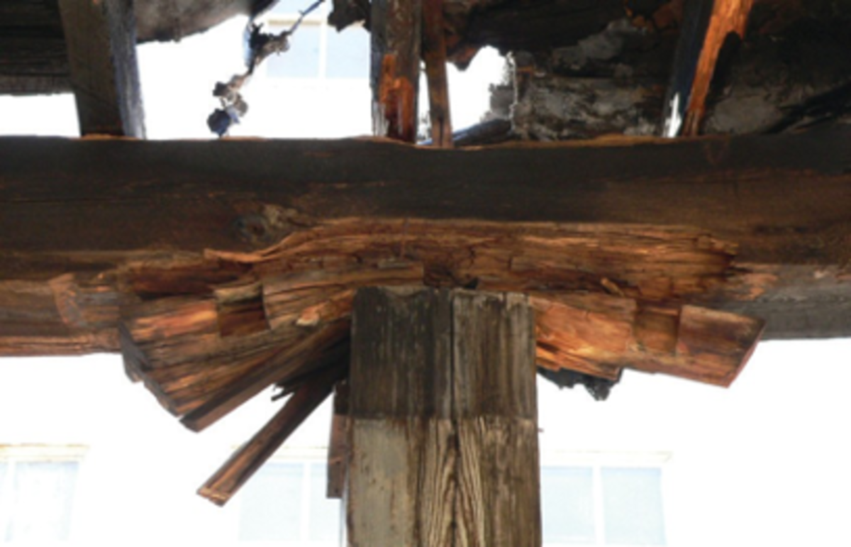 Fig. 1. Advanced decay of a timber girder and bearing plate. The deterioration was caused by years of exposure to roof leaks and resulted in the bearing plate being crushed. Photograph by Ronald W. Anthony.